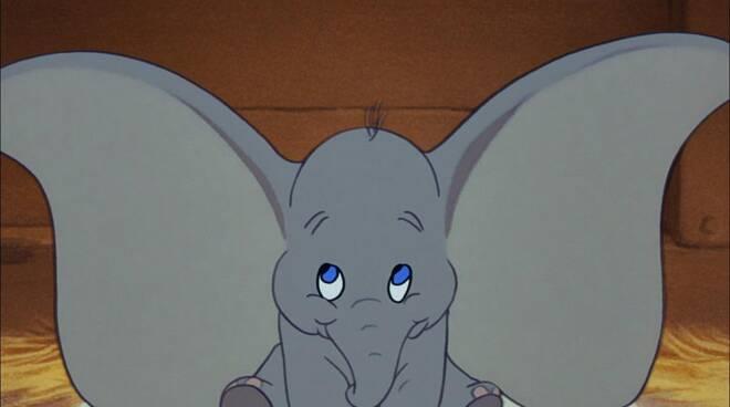 27012021 Dumbo generico-gennaio-2021-102233.660x368
